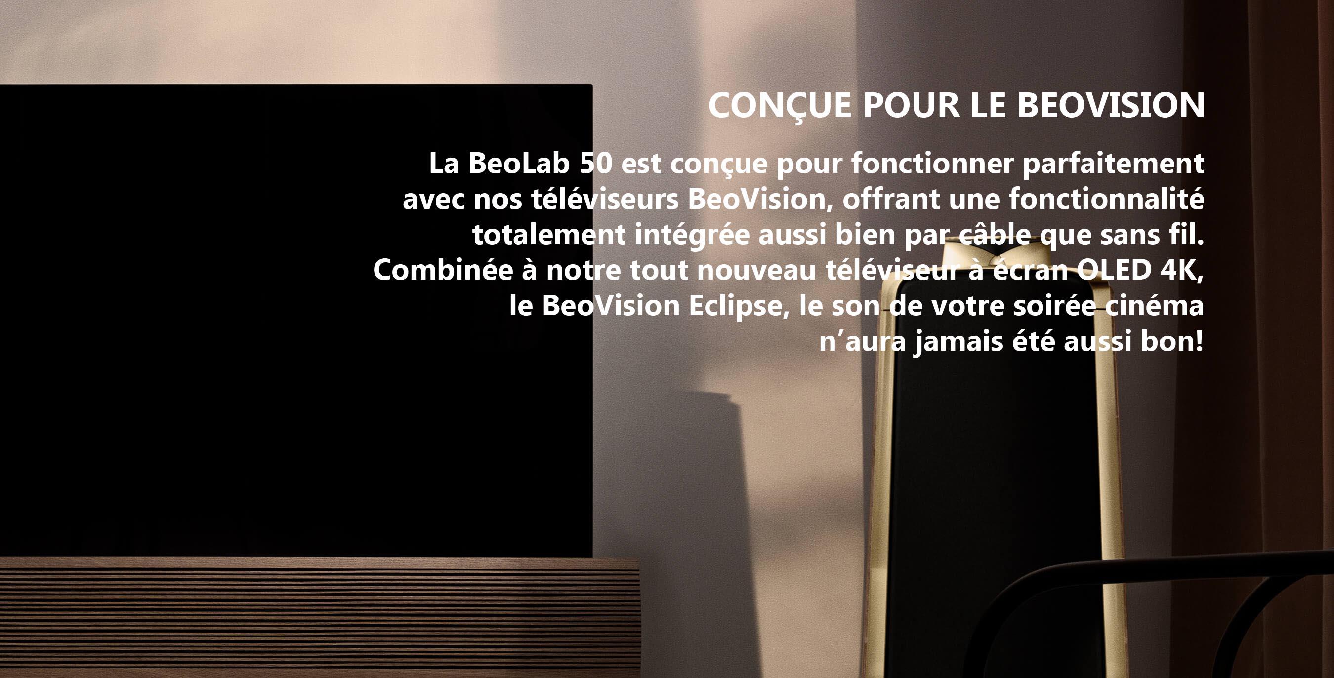 https://lamarque.fillion.ca/wp-content/uploads/2019/03/integration-1350-01-brass-min.jpg