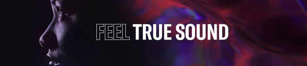 https://lamarque.fillion.ca/wp-content/uploads/2021/06/feel-true-sound-banner.jpg